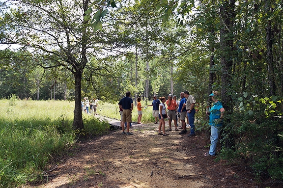 Master Naturalist students explore fauna at the Crosby Arboretum. (Photo courtesy of Randall Hines)
