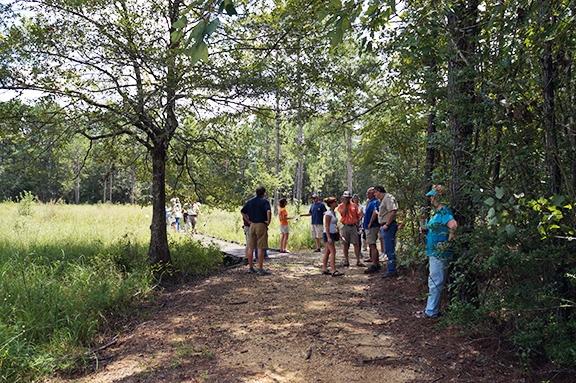 Master Naturalist students explore fauna at the Crosby Arboretum. (Photo courtesy of Randall Hines)