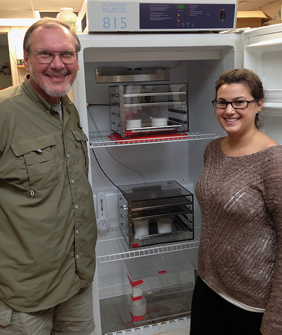 Dr. Chet Rakocinski and Alyssa Bennett pose in front of the climate-controlled tanks where they measure the impact of temperature and hypoxia on Gulf worms.