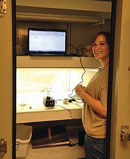 Kelsey Gillam measures the respiration of the coastal sediment-dwelling worm Capitella teleta to determine its response to the two stressors.