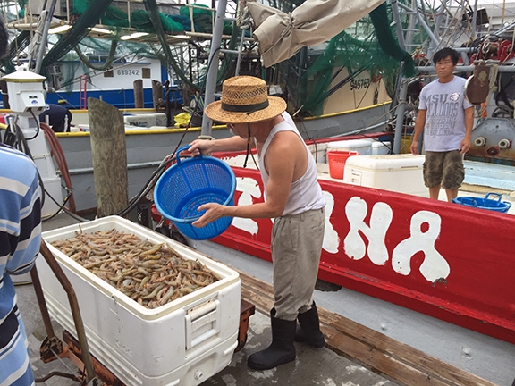Some people buy shrimp in Biloxi and then sell it in other cities and towns.