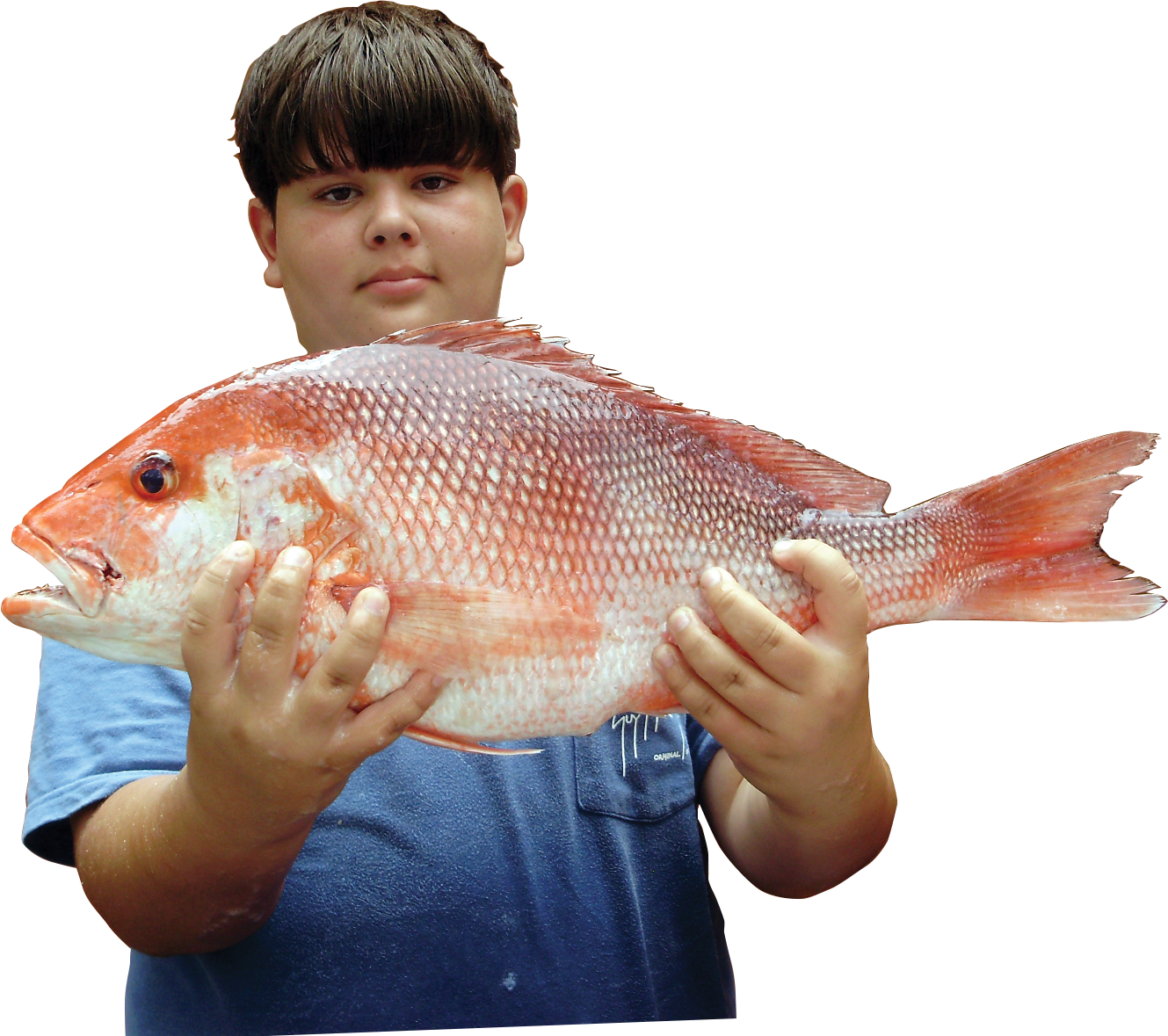 Red snapper is an important species in the Gulf for recreational and commercial fishers.