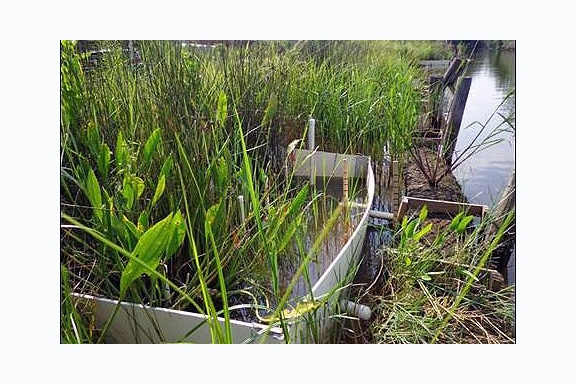 Research project on the impacts of sea-level rise on restored marshes at the Weeks Bay NERR in Alabama. This method can be found in Julia A. Cherry et al. 2015. DOI: 10.1111/2041-210X.12441