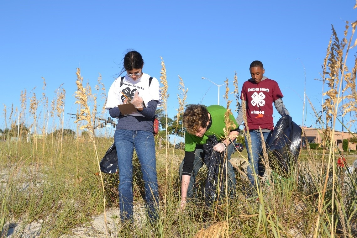Students collect data during a past Mississippi Coastal Cleanup.