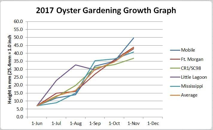 The Mississippi Oyster Gardening Facebook page and Instagram accounts highlight gardeners' progress.