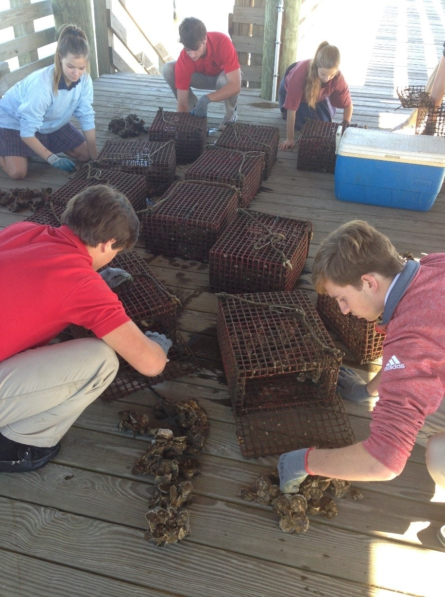 Students at St. Stanislaus in Bay St. Louis, Mississippi, count and measure their oysters.