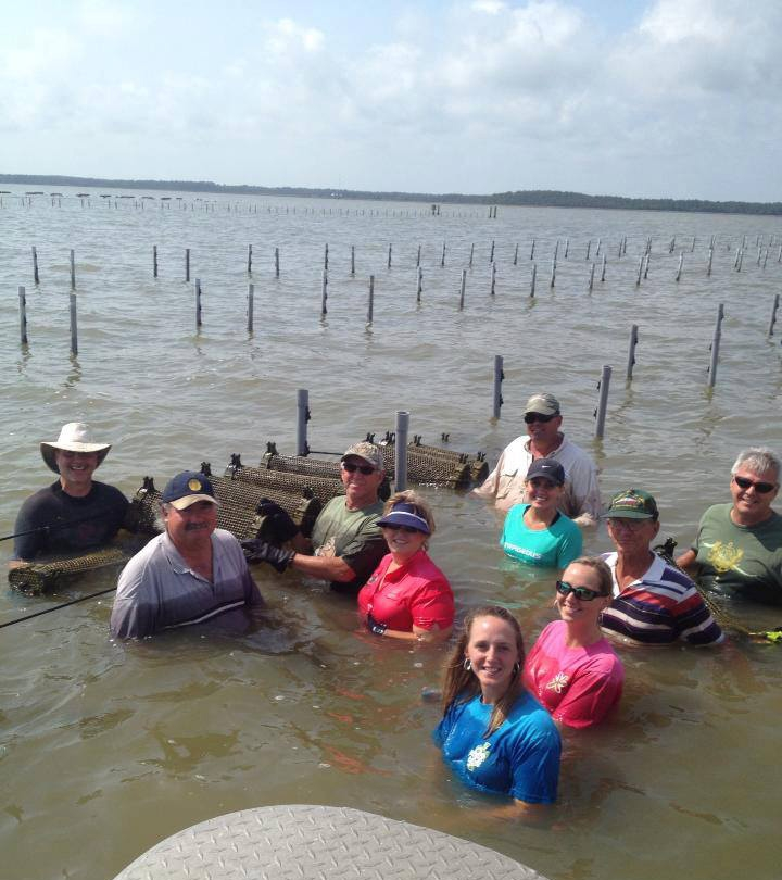 Bill Walton, left, teaches the fundamentals of oyster farming to a group. Photo by Rosa Zirlott/Murder Point Oyster Co.