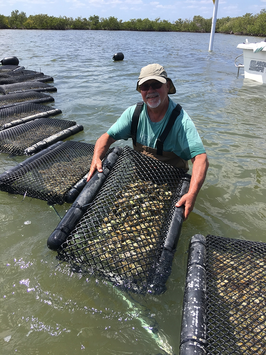 Dennis David of Indian River Oyster Company in New Smyrna Beach, Florida, works with floating oyster gear while visiting Southern Cross Shellfish farm in Cedar Key, Florida. (Photo courtesy of Dennis David)