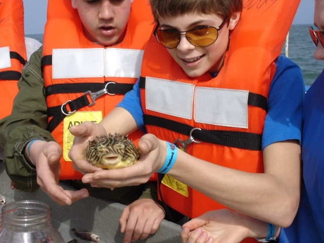 Ocean Literacy Principles are taught in science programs at the Dauphin Island Sea Lab.