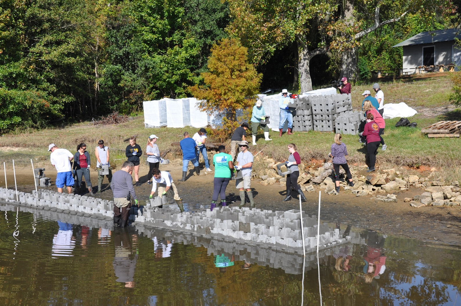A group installs a living shoreline at Camp Wilkes in Biloxi.